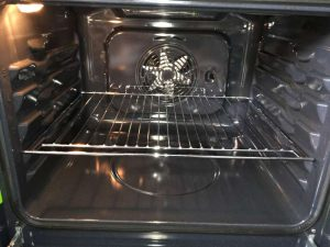 professional oven cleaner worthing